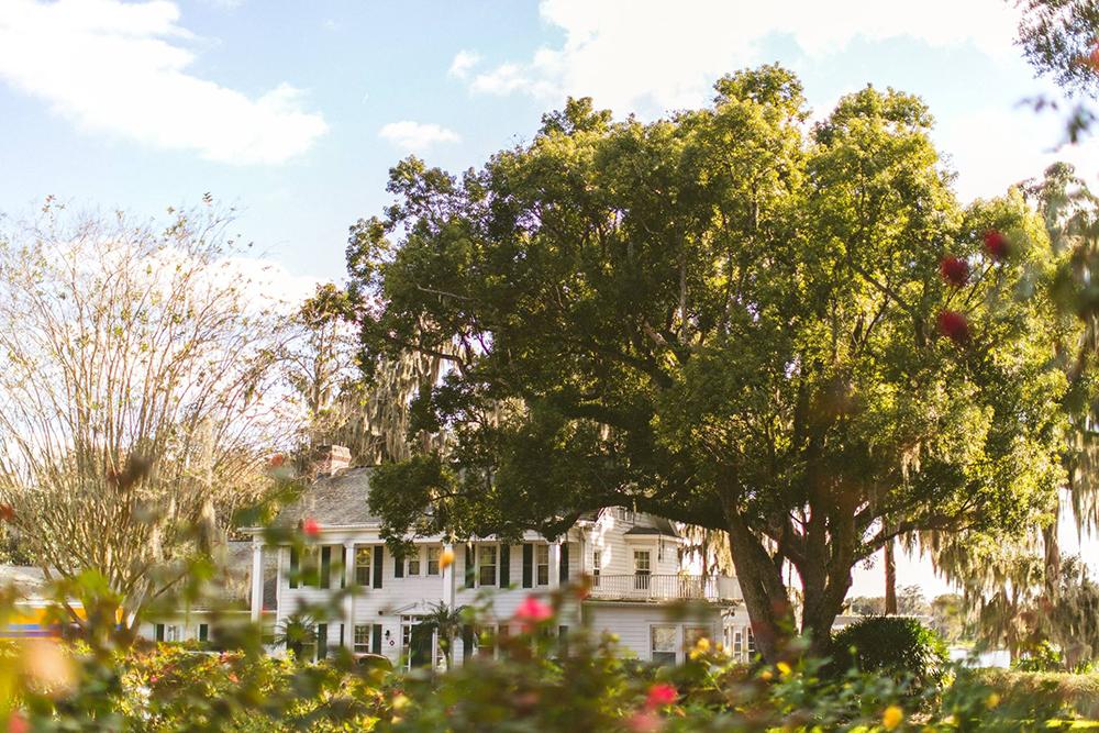 Cypress Grove Estate House, Orlando Wedding, Lakeside Wedding, Outdoor Wedding, Central Florida Wedding Venues, Rose Garden, Spanish Moss, Oak Trees, Southern Wedding, Florida Wedding, Destination Wedding
