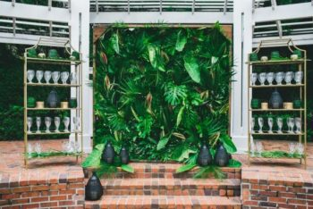 tropical living wall rental orlando